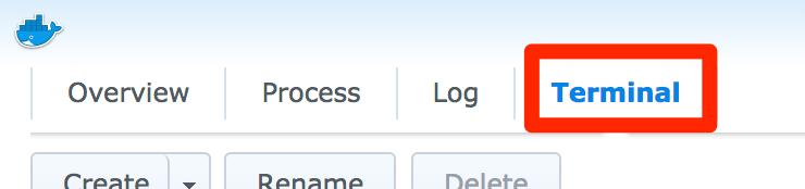 Synology Docker app Container menu Terminal option